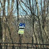 この標識はなんですか? 北海道の道央の一般道です。  青と白の標識で、動物の絵が描かれています。 他にもカラス、魚、熊などのものもありました。  ・この標識の表す意味はなんでしょうか。 ・なぜ生き物の絵が...