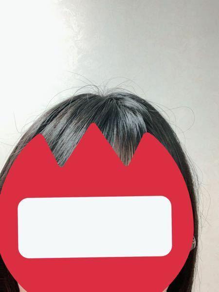 こんな感じに切れ毛?アホ毛?が目立ってしまうのですが、どうしたら良いでしょうか。