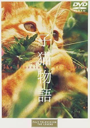 日本歴代興行12位の子猫物語(興行成績98億円)のキャストは小泉今日子さん以外には?