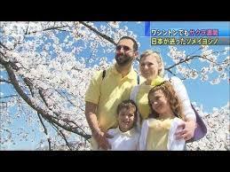 「慰安婦問題」は、「ソメイヨシノ韓国起源説」と全く同じパターンだとおもいませんか?、いかがですか? . ある「きっかけ」を発端として、独自の根拠すらない、「嘘」の「創作」が「大量発生」する。 . ---------- 王桜の一部の個体がソメイヨシノに類似していたことから、過去には日本の「小泉源一」が済州島に自生する本種とソメイヨシノが同種であるとの説を唱えたことがあった。 ---------- ↑これがそもそもの「きっかけ」である 「ソメイヨシノ韓国起源説」は、2009年4月6日に聯合ニュースが報じた韓国国立山林科学院暖帯山林研究所のキム・チャンス博士は日本統治時代に日本人が済州島の王桜を改良、のちに大量増殖し、それを3000株アメリカに贈ったものが、ポトマック川川辺のサクラだとの主張から始まった。 ↑「ソメイヨシノ韓国起源説」が始まる。 (補足:中央日報は、済州島に住んでいたフランス人神父が1908年に王桜を採取し、それをドイツの学者がソメイヨシノの変種だと報告したとされることが起源説の発端になっていると主張していた) ※「王桜」が新種として初めて採集された1908年よりも前の、1877年と1882年に植樹されたソメイヨシノが日本国内に現存することから、ソメイヨシノ起源説は元々「非合理」である。 ----- ★その後、「ソメイヨシノ韓国起源説」の「創作」が「大量発生」し、めちゃくちゃな状況となる。 ---------- ↓漢拏日報(韓国語) 2018-04-02 http://www.ihalla.com/read.php3?aid=1522680687591051184 ↑2001年4月に山林庁林業研究院チョ・ギョンジン博士チームは、DNA分析を通じて、日本にある王桜の原産地が済州漢拏山であることを明らかにした(キム・クムスク市民記者) ---------- ---------- ↓済民日報(韓国語)2018-03-26 http://www.jemin.com/news/articleView.html?idxno=506687 ↑2011年には韓国林業研究所が、2014年には成均館大学教授が、済州王桜の遺伝子検査を経て、ワシントンD.C.の桜が生物学的に同一の種子であることを確認した(コ・チャンフン済州大学名誉教授) ---------- ---------- ↓中央日報(韓国語) 2018-04-06 http://news.joins.com/article/22513289 ↑遺伝子検査の結果、済州(チェジュ)王桜であることが明らかになった。日帝強制占領期間に日本が我が国から採取して行ったと見られる(カン・ジョンヒョン記者) ---------- しかし、正確な遺伝子データを突き付けられて、韓国中央日報が、2018年09月13日にバラして終息しました。 ↓(韓国)中央日報(ソメイヨシノ起源めぐる110年論争に終止符)---2018年09月13日 https://japanese.joins.com/article/129/245129.html ↑日本東京と米国ワシントンなどで育つ日本のソメイヨシノのゲノムと比較分析した結果、済州の王桜と日本のソメイヨシノは明確に異なる別の植物であることが分かった。日本のソメイヨシノはシダレダクラを母系、オオシマザクラを父系とし、数百年前に人為的な交配を通じて作られた雑種という。済州の王桜と日本のソメイヨシノはともに雑種だが、別の種だ(韓国中央日報より)。 ↓中央日報【噴水台】ソメイヨシノ起源論争の虚しい結末---2018年09月15日 https://japanese.joins.com/article/185/245185.html?servcode=100&sectcode=140 ↑人気がある桜に商業的に便乗しながら「日本の桜の原産地は済州だからこれは私たちの伝統だ」と主張する自己欺まんだけはもうやめるべきだ(韓国中央日報より)。 ↓アメリカ、ポトマック川のソメイヨシノ .