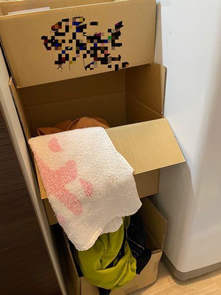 掃除がしやすいからと、脱衣所のカゴが段ボールになってました。 どう思いますか?アリですか? 段ボールは再利用してます。 プラスチックのカゴは網目にホコリがついて掃除がしにくいから嫌らしいです。