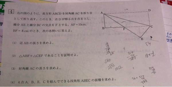 この問題の(4)が分かりません。 解き方を教えてください!