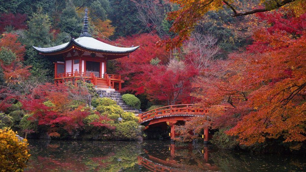 これは京都なんという場所でしょうか?