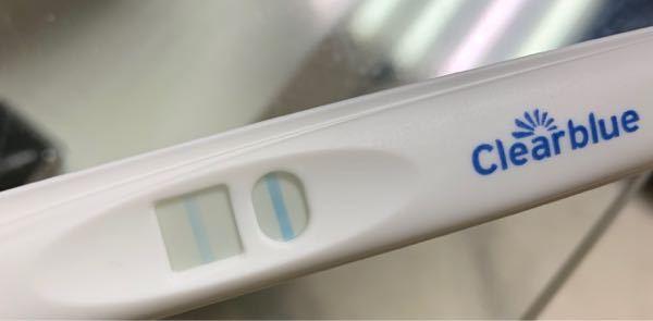これは妊娠していますか? 反応薄過ぎませんか?