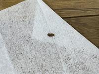 お見苦しい写真すみません。 これはゴキブリの幼虫でしょうか。 おわかりになる方いましたら回答お願いします。