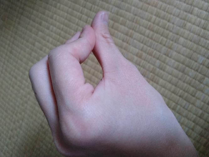 この指をの合わせ方をやる芸人ていますか?