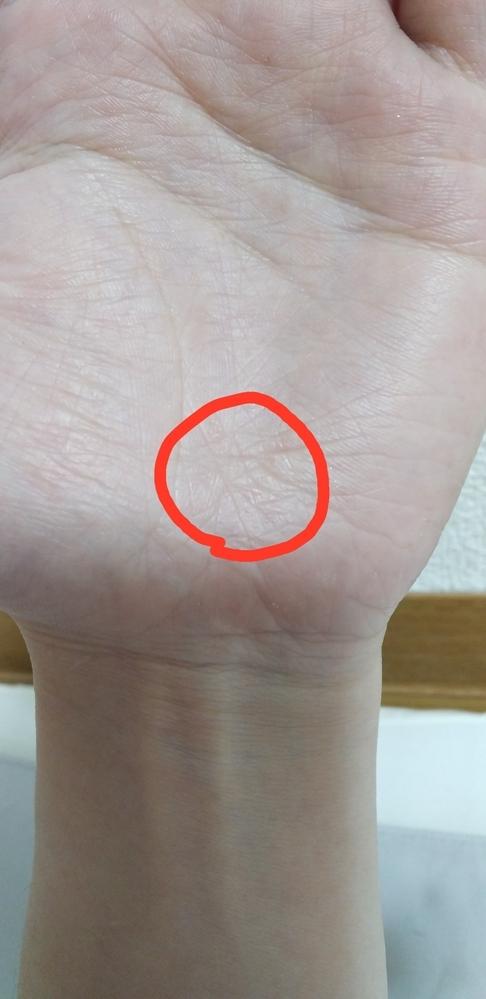 手相について教えて下さい! 左手の赤マークのところに一筆書きの星があります。 この手相の意味を教えて下さい。 画像ではうつらなかったのですが、感情線と、頭脳線の間、つまるところ手のど真ん中にも一筆書きの星があります。