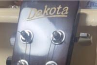 Dakotaというギターについて詳しく知りたいと思っています。 このDakotaなるメーカーなりブランドなりの素性について記述しているページをご存知でしたら是非お教え願います。