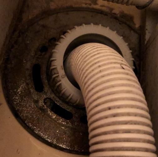 洗濯機の排水溝を掃除しようとしましたが写真の排水皿が外れません。どのように外したらよいですか?