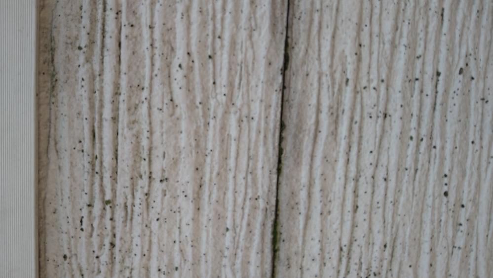 築6年です。 屋上の胸壁に少しコケなどが出てきました。塗装も剥がれて来ました。掃除をしても黒さが残ります。 きれいにしたいのですがどうしたら良いでしょうか?