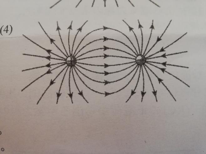 画像の負電荷側の電気力線おかしくないですか?