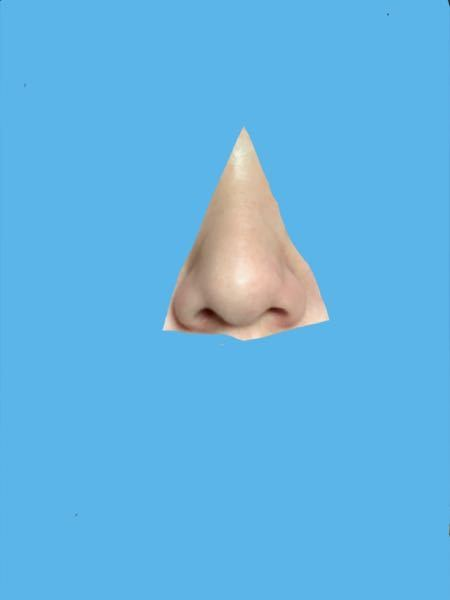 自分の鼻がすごく嫌いなんです。小鼻が垂れ下がってるし、筋が通ってないし。 今ぽっちゃりなんですけど、痩せたらマシになりますか???筋通りますかね? ヘアピンで時々挟んでるんですが効果あります?