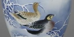 この鳥の種類を教えてください トモエ鴨?かなと思うのですが嘴がなんとなく違うので知りたいです