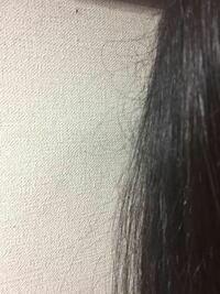 髪の切れ毛?アホ毛?がひどいです。 20代女性です。 3年前に一度だけ縮毛矯正をかけたことがありますが、カラーやパーマはしたことがありません。 youtubeやネットで髪の美容法を調べ実践しても改善しません。 以下私のシャンプーの流れです。  ・お風呂の前に櫛で毛先からとかす ・ぬるめのシャワーで丁寧に予洗いする ・シャンプーは泡立ててから使う ・トリートメントは髪の中間から毛先にかけて揉み...