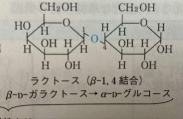 ラクトースは、β-ガラクトースとβ-グルコースが結合しているのではないのですか?