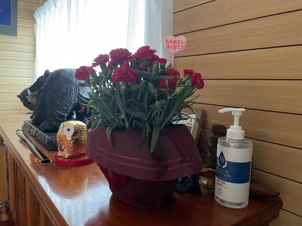 母の日に鉢植えのカーネーションを贈りました。私は今日1日持てばよいと思っているのですが、母親は長く花を咲かせておきたいようです。 長く花を咲かせておくにはどうしたらよいのですか(水やりの頻度、置く場所は日向?日陰?等) 回答よろしくお願いします。