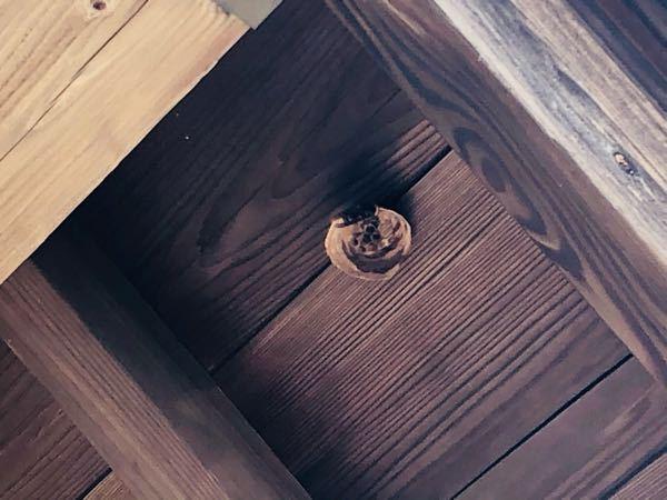 この蜂の種類分かりませんか? ご近所さん宅の玄関頭上に出来ました。 ※スマホでのズームはこれが最大です…(ノ_<) よろしくお願い致します。