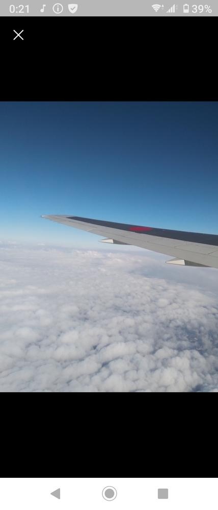 これはどこの航空会社の翼でしょうか