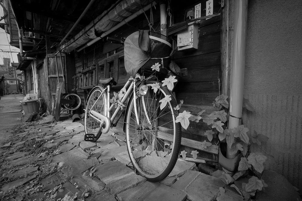 裏町にある家に使われなくなった自転車。 これ、いいとか悪いとかではなく、写真をみてどのような想いで撮影し、仕上げたか読み取れますでしょうか。 心を想像してみてください。評価は不要で心を読んでください。 消えたようなので再掲します。