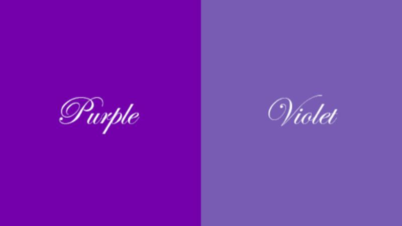 紫色の英語訳にvioletとpurpleがありますが、母語が英語の人たちには、violetは美しい色でpurpleは猥褻な色という印象があると聞きます。 この理由は何ですか?