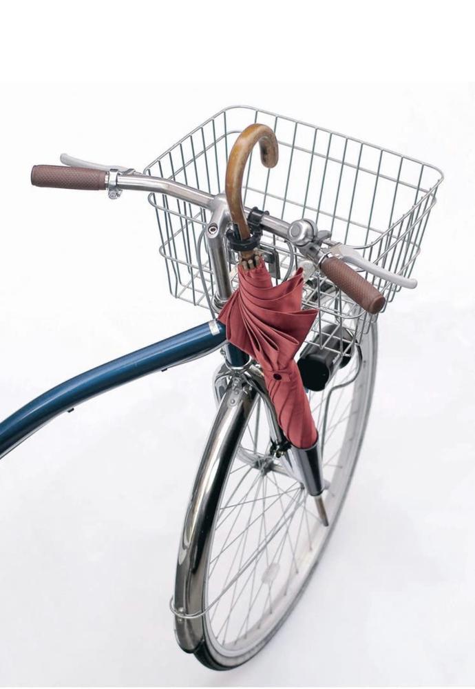 ルイガノのMULTIWAY 27に添付写真のような傘ホルダーを取り付けることは可能ですか? 自転車で傘を持ち運びたい時どのようにすればいいか教えていただきたいです。