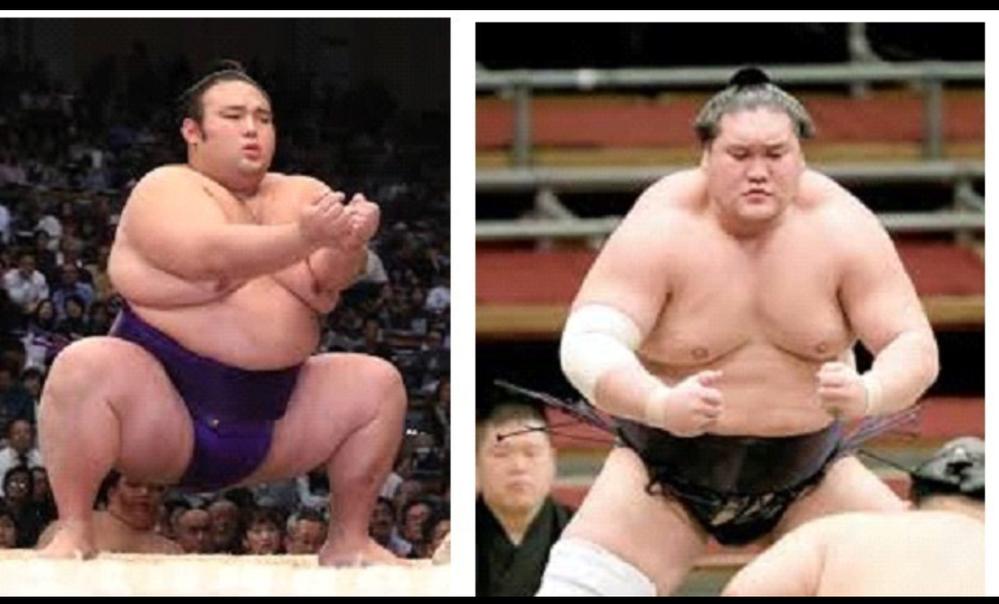 大相撲5月場所 優勝は早くも 大関:照ノ富士と大関:貴景勝に絞られましたか?