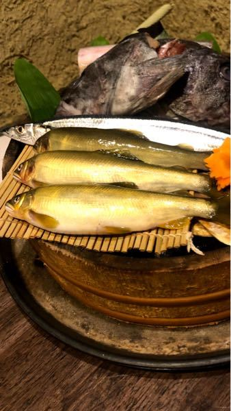 秋刀魚の手前の魚は何というのですか?