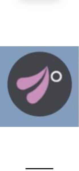 この画像が何か分かる人いますか?