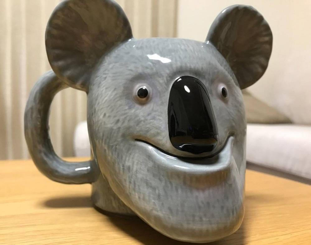 コアラも顎出てきますか?