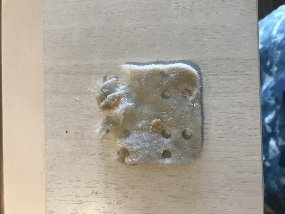 加湿器のフィルター(写真のような)って何か代用品ありますか? ハイブリッド式の加湿器で3年使用しています。掃除しようとしたらフィルターが劣化して洗ったらボロボロと破れてきてしまい、来年は確実に使...
