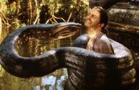 逃げたヘビがニシキヘビではなくアナコンダならば 下水道に逃げ込んだ途端、 下水が詰まって直ぐに見つかりましたか?