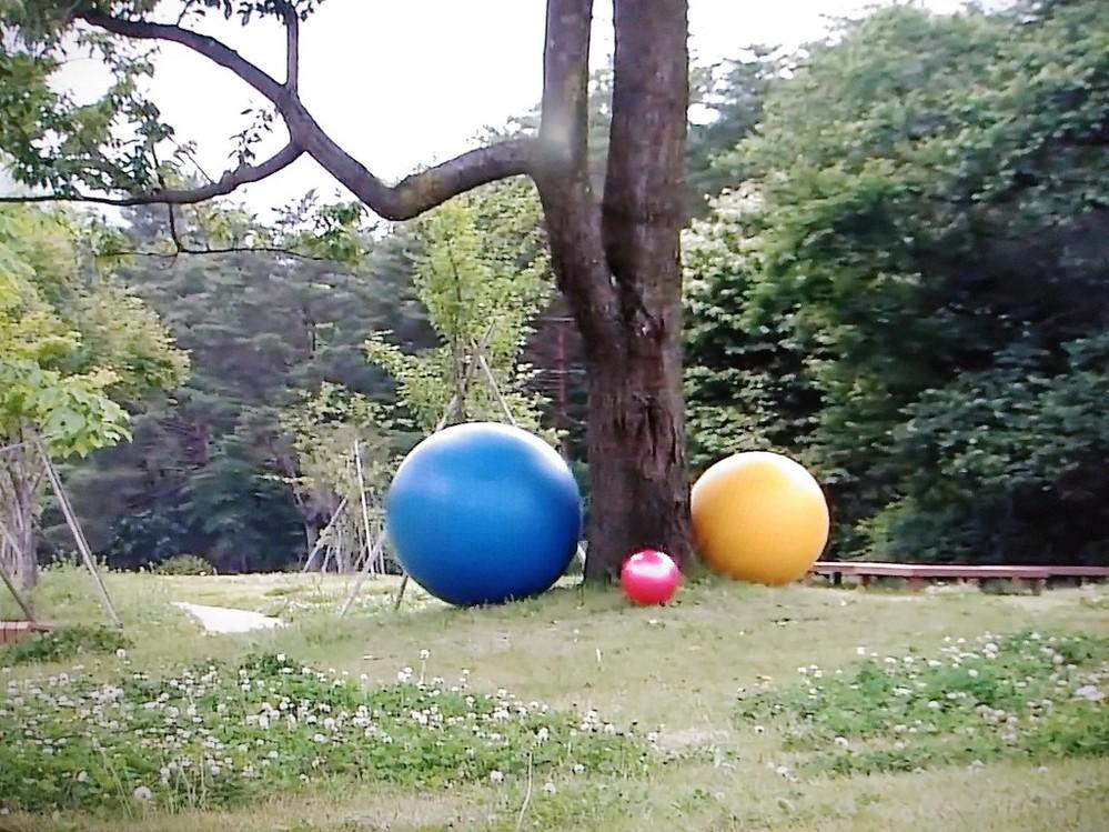 この青いバランスボールどこで買えるのでしょうか?