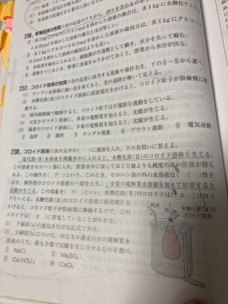 238の(2)は何故か数の多い陰イオンが多い物質を選ぶのですか?沈殿には関係あるのですか?