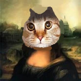 大喜利 失笑猫映画『ノラとドラ』寒っ。 どんな内容?