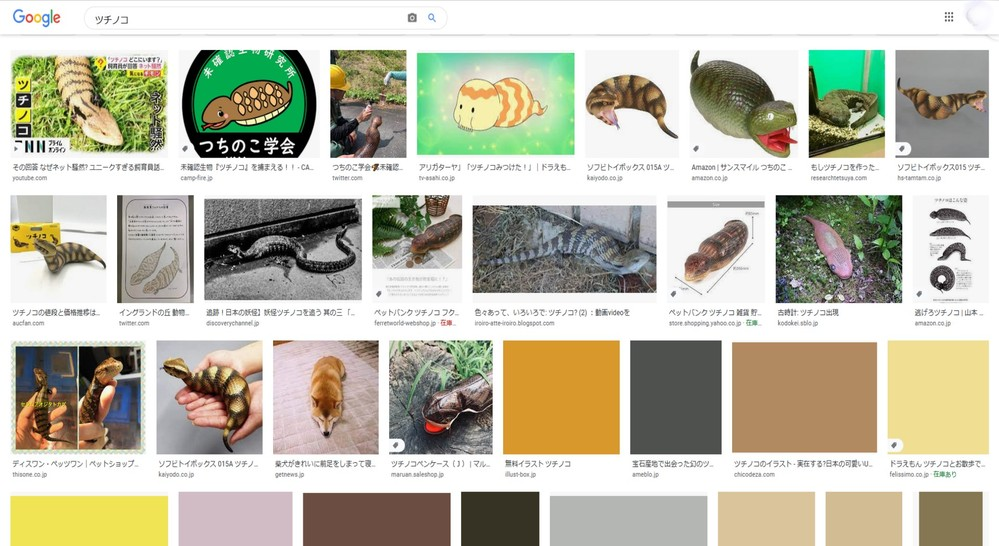 googleの画像検索でサムネイル画像が20枚しか表示されなくなりました。 何の画像を検索しても、大きさや時間を指定しても20枚以上は画像として表示されません。 そんな仕様に変わったのでしょうか? また、そのことについて詳しく説明のあるサイトなどありましたら教えて下さい。