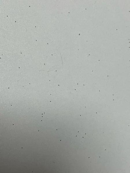 閲覧注意です 3日前ぐらいから、0.5mm〜1mmぐらいの黒い 虫が大量に出てきて困っています ほんとに急に増え始めて布団や床、壁にもびっしりいる状態です。 特徴としては ・あまり動かない ・すごく小さい ・黒い 心当たりがあるのは、ここ最近天井に鳥が住み始めたぐらいです。 この虫はなんですか??(分かりにくくてすみません) どーやったらいなくなりますか? 鳥とはなにか関係あるのでしょうか?? ほんとに増えすぎて寝ていても顔や体を這い回っています。助けてください