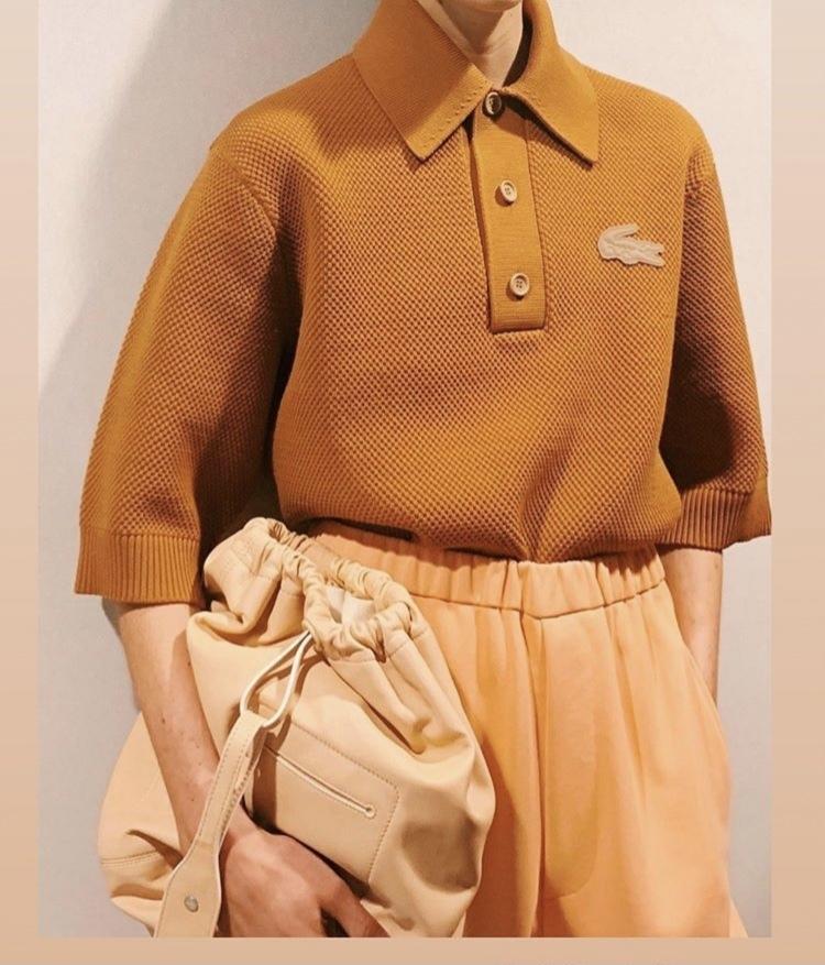 このラコステのポロシャツの詳細を教えてください。(いつのシーズンか、別ブランドとのコラボだったりするのか等。)