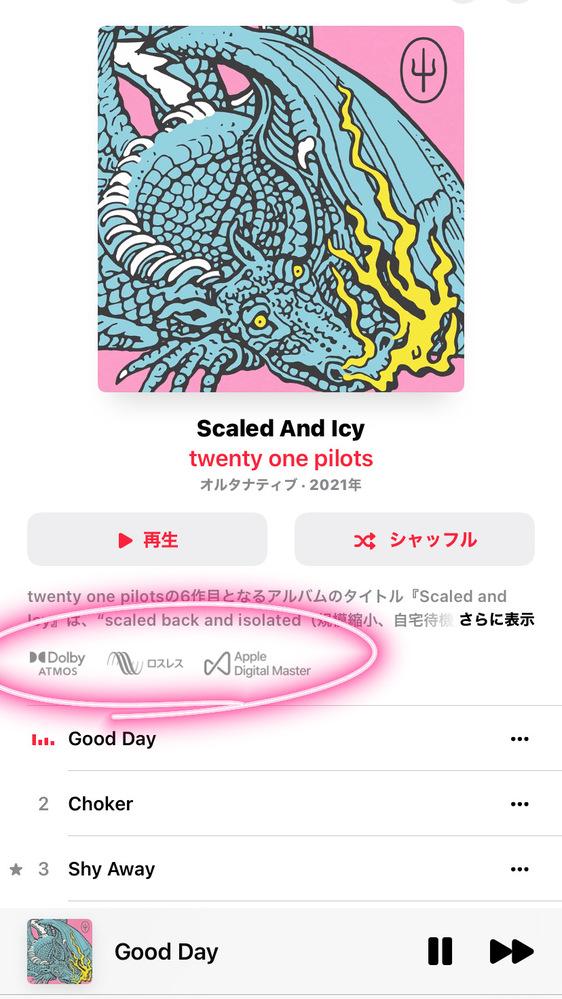Apple musicの丸で囲ってある部分はどういう意味があるのか教えていただきたいです 最近ここの文字に気がついたので意味があったら教えてほしいです