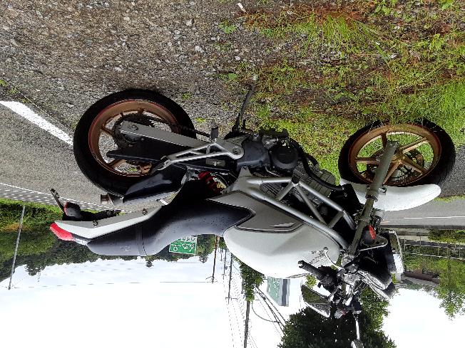 このバイクってSR?