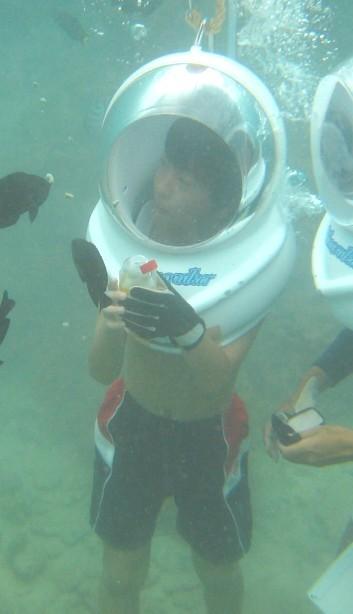 これって水の中の写真? 何をしている所だと思いますか?