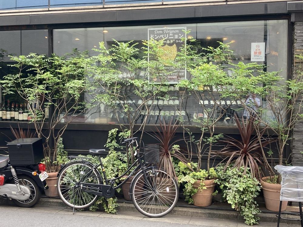 とある店先に素敵な観葉植物が飾らていましたが、この観葉植物の名前が分かる方、教えてください。 シマトネリコかな、と思いましたが、幹や枝が曲がっているし、葉もだいぶ小さいし、違うのかなと。 写真の中に植木鉢が6つありますが、左から1,2,4,6番目の鉢です。