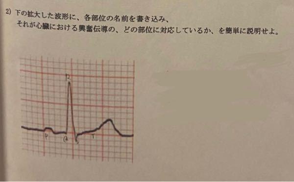 看護学生です。 解剖生理学の循環器系のところで質問です。 写真の心電図で記録される心臓における興奮伝導の、どの部位に達しているかが分からないので教えて頂きたいです。 先輩が言うには P波…洞房結節 QRS波…房室結節 T波…プルキンエ繊維 と言っているのですが、テキストでのP波の説明では洞房結節の話が出ていなかったので詳しい方教えていただきたいです!