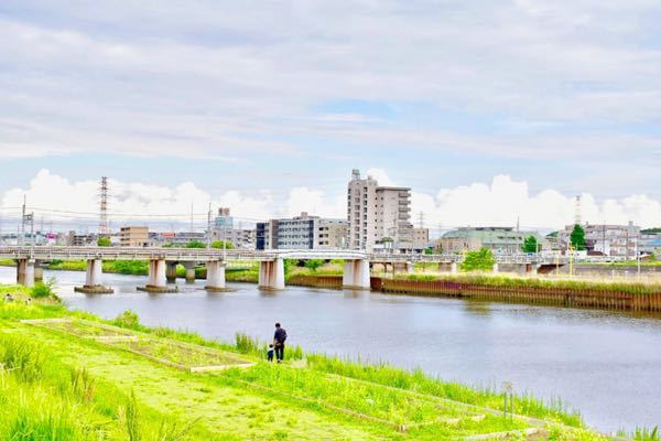 この綱島駅近くにある土手から見た、川の上の橋のようなものは人が通れるところですか? それとも電車が通る用の線路ですか?