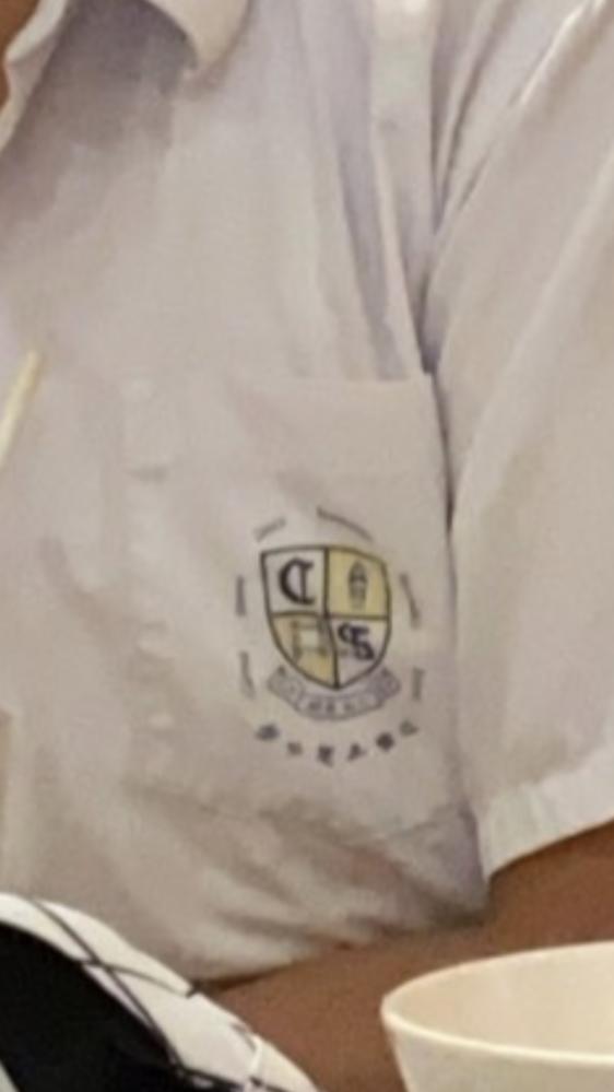香港の学生制服に詳しい方がいれば 教えてください。 この紋章は何処の中学校でしょうか?