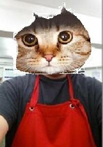 お化け屋敷 大喜利 、 、 キュウリパックをした猫が、化け猫になった!! みたいな失笑をくれ