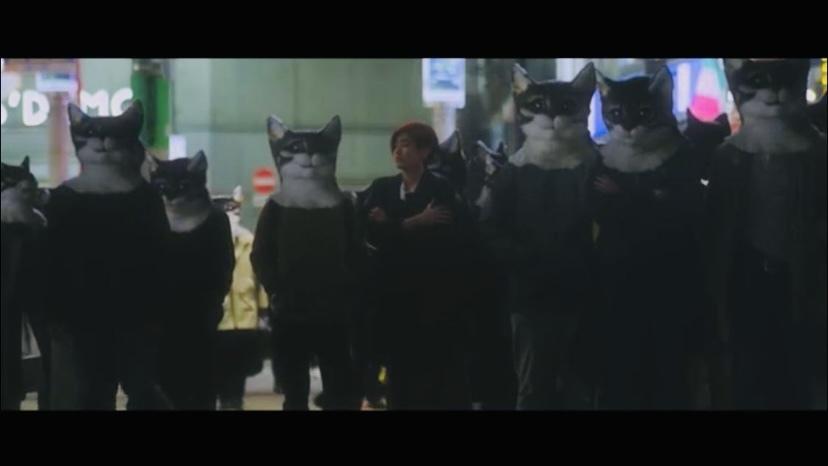 この画像だけで何の作品かわかる方いますか? 猫が関係するものなのかもしれません。 映画なのか、MVなのか、、