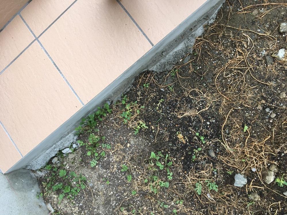 以前、業者にコンクリートの土間を 施行依頼をした際、色ムラがかなり できてしまい、苦情を入れました。 渋々修正のため、その上からタイルを 貼ってもらったのですが、画像のように なっていました。また、画像左の方に 赤く印が付けてあるのですが、その下に 2箇所ほど穴が開けられたままになって いました。こんなものなのでしょうか。それとも、この業者の仕事が 雑なのでしょうか。苦情を入れた際の 対応が悪く、あんまりその業者のことを 信用していません。新築で家を建てたので 台無しにされ、腹が立って仕方がありません。どのように対処したらよろしいでしょうか。みなさんの知恵や意見をお聞きしたいです。