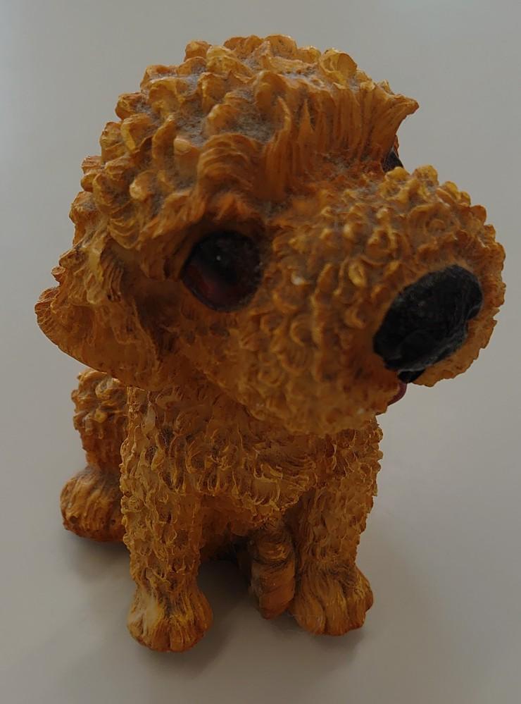 画像はトイプードルの置物ですが、これの顔の部分の毛量を少なくして、目を顔の毛で隠したような犬を近所で飼っていました。 成犬とは思えない程小さな犬でした。犬種は何でしょうか?