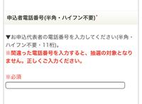 乃木坂46のチケット応募についてなんですが、この追加情報の電話番号って家の固定電話でも良いのでしょうか?