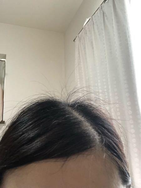 ひどいアホ毛を治してツヤツヤ髪にしたい。 写真の通り、髪を結んでもアホ毛?癖毛が爆発してしまいます。 医療系の学校に通っているのですが、実習の時はマトメージュワックスを使ってまとめても数時間後にはアホ毛が出てきます。 寝起きでもツヤツヤツルツル髪になる方法はありますか? シルクのナイトキャップとシルクの枕カバーを試しましたがあまり効果ないです。 やっぱり縮毛矯正やストレートパーマが1番確実で手っ取り早いですか? 出来ればホームケアでボワボワを治す方法があれば知りたいです。